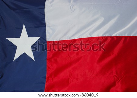 A new state flag is ready to raise up the flag pole. - stock photo