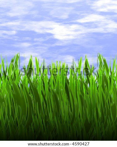 a nice big illustration of long green grass in front of cloudy blue sky