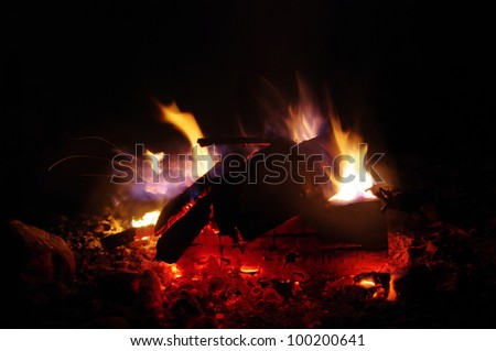 a nice campfire burning outside