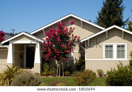 A nice upscale suburban house in California under the blue sky, a tree with red blossoms in front.