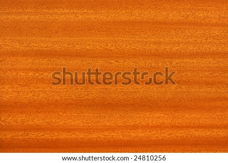 A nice wooden texture - stock photo