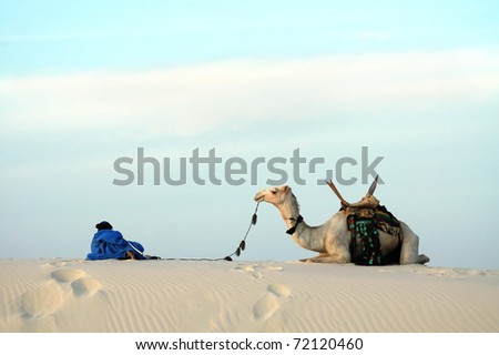 A nomad and his camel resting on top of a sand dune - stock photo