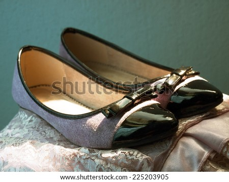 A pair of elegant pretty shoes for girls
