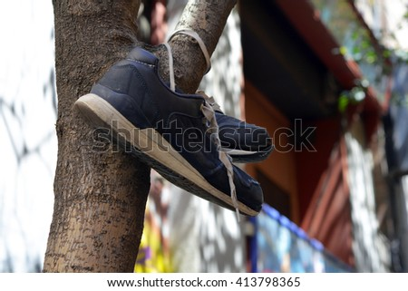 A pair of old blue sneakers hanging from a tree - stock photo