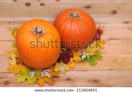 a pair of pumpkins and autumn leaves  for Halloween decoration