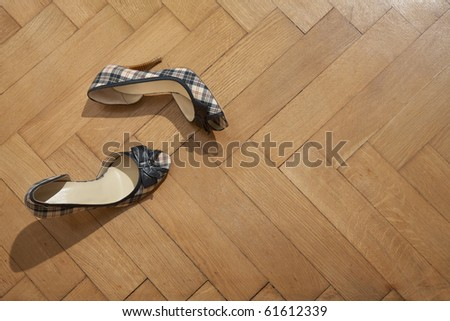 A pair of woman's shoes on a wooden floor - stock photo