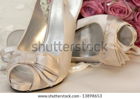 A pair of women high heel shoes
