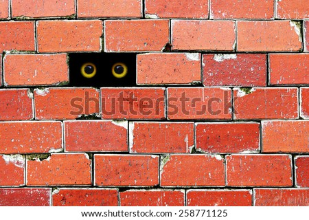 A pair of yellow eyeball peeping out of a hole in a weathered brick wall.  - stock photo