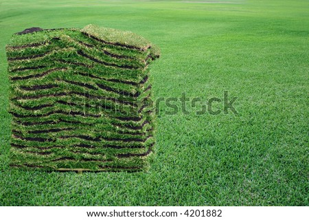 A pallet of green sod over a green grass field. - stock photo