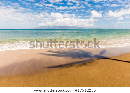 A Palm Tree Casts a Shadow on a Tropical Beach - stock photo
