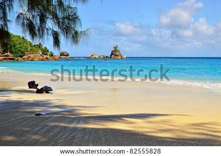 A palm tree shadow on an empty sandy beach on Seychelles islands. Mahe, Anse Soleil - stock photo