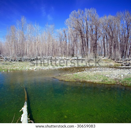 A panorama of a stream and woodland in Montana on a sunny day. - stock photo