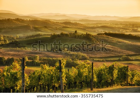 A panoramic view over the hills of Chianti at sunset hour - stock photo