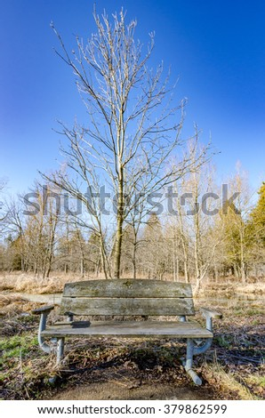 A park bench that has not seen a lot of use during the winter. - stock photo