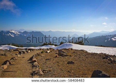 A path at Paradise in the Mount Rainier National Park, Washington - stock photo
