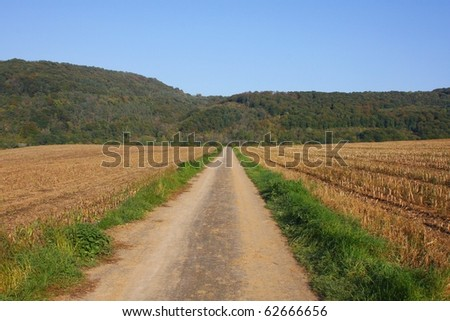 A path through harvested fields