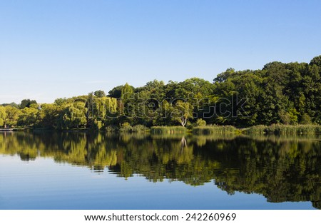 A peaceful lake with trees and reflections during the day with copy space - stock photo