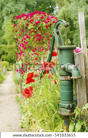 a peaceful picturesque rural landscape with red wild poppies growing in the garden and old old-fashioned vintage copper hand water pump, a path going to the forest