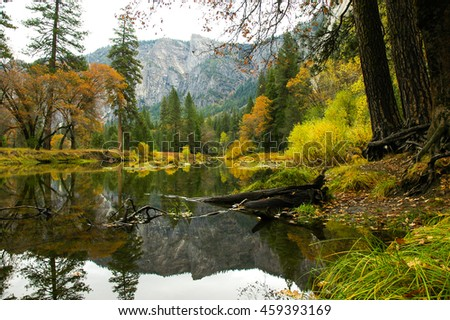 A peaceful river flowing serenely through a forest. - stock photo