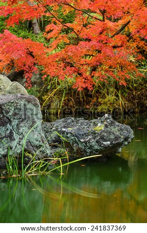 A peaceful scene at a Japanese garden in Kyoto, Japan. - stock photo