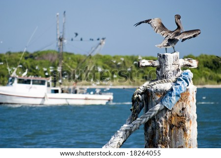 A pelican drying its feathers with a shrimp boat trawling in the background.
