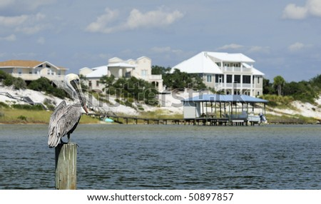 A pelican sitting on a post across from Ono Island, Alabama. - stock photo