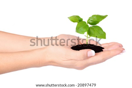 A person holding a small plant in the studio