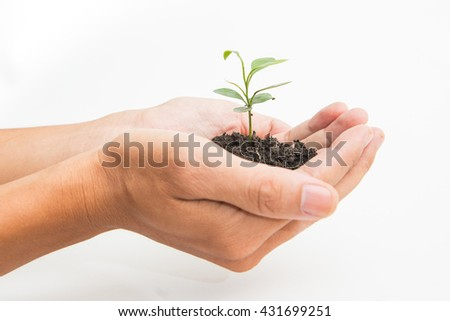 a person holding a small plant on white background - stock photo