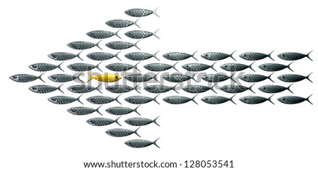 A perspective view of a school of stylized silvery fish swimming in the shape of an arrow with a contrasting golden one swimming in the opposite direction on an isolated background - stock photo