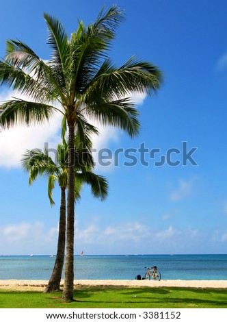 A photo a beach in Honolulu, Hawaii - stock photo