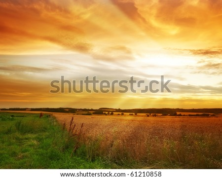 A photo from the countryside - harvest time - stock photo