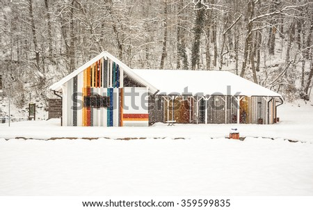 A photo of a beautiful colorful wooden outhouse with a roof under the snow stranding at the foot of the high trees during the heavy snowfall with the falling snow, snowflakes and the house in focus