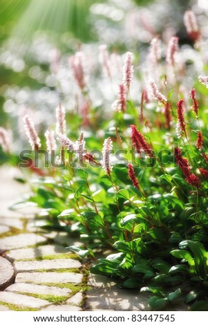 a photo of Beautiful garden details - stock photo