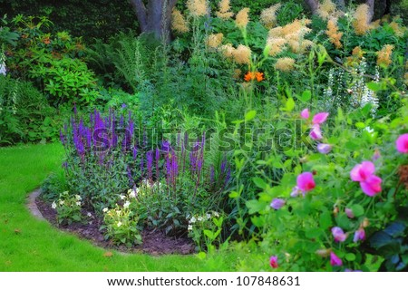 A photo of Garden flowerbed in sunlight - stock photo
