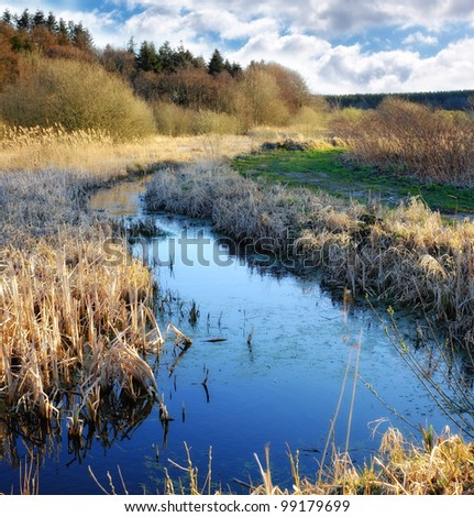 A photo of lake in pure nature - stock photo