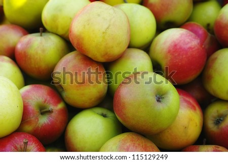 A photo of lots of apples - stock photo
