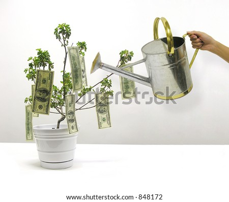 A photo of money growing from a tree - stock photo