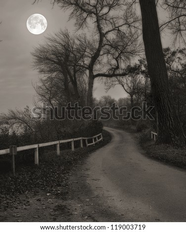 A photo of Moonshine in landscape - stock photo
