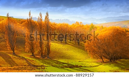 A  photo of Sunrise in autumn in New Zealand - stock photo