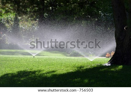 A photograph of a water sprinkler showering flowers during a hot summer July day in Oklahoma City. - stock photo
