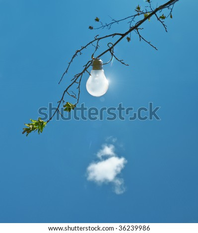 A photography of a light bulb in a tree