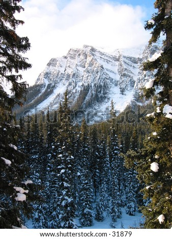 A picture of a mountain with forests near Lake Louise, Alberta. - stock photo