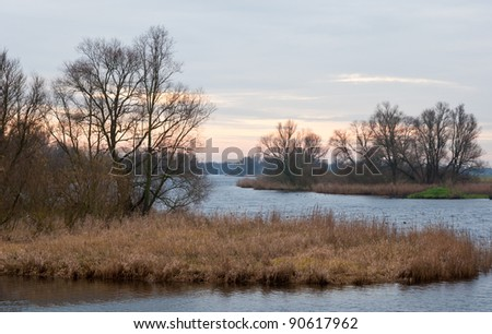 "A picturesque view of the National Park ""De Biesbosch"" in the Netherlands. The winter has just started and the sun is not visible yet."