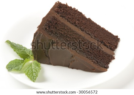 A piece of chocolate cake with mint on a plate - stock photo