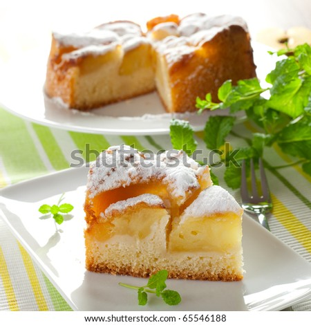 a piece of fresh baked apple pie - stock photo