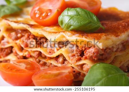 A piece of lasagna with fresh basil and tomatoes macro horizontal - stock photo
