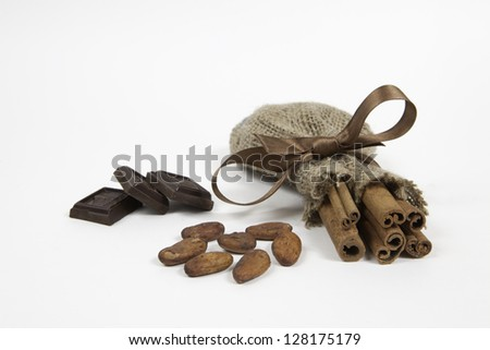 A pieces of chocolate, cocoa beans and cinnamon on white background - stock photo