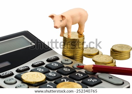 a pig and a calculator as a symbol photo for costs and expenses on a farm in the landwirtschaft.ausgaben, revenue and accounting. - stock photo