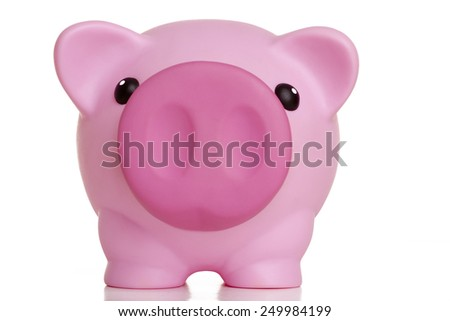 A piggy bank on dollars - stock photo
