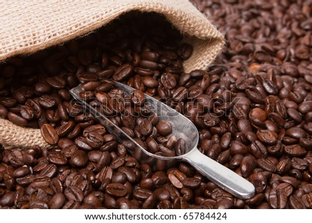 A pile of dark roasted coffee beans pouring out of a burlap sack. - stock photo